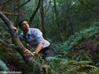 A mixed race businessman appears to be hiding or running from something or someone. The man is wearing a dress shirt and slacks and is holding onto a tree limb deep in a dark thick forest of trees.